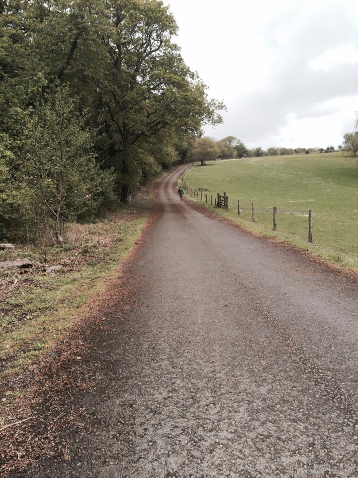 the long road climb - Liz Peapell